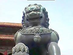 каменной дракон в лев в НСМ tphcm