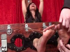 Ravishing Rosa Tickled