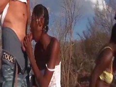 safari africano orgía sexual en la naturaleza