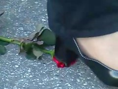 1 red Rose crush