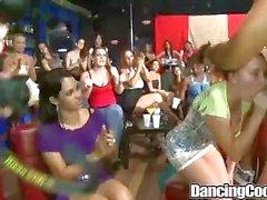 Dancingcock Grup BJ Orgy