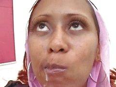 Arab Harem Nicki