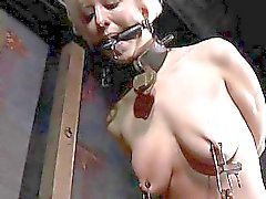 Hard teasing for beautys nipples hairless pussy