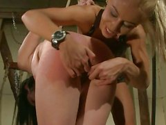 Nasty Nikky Thorne slates her hot brunette slave
