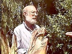 Gamla män delar en slampa i trädgården