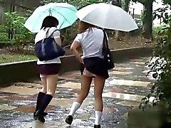 Japanin pikkuhousut - Down sharking - Opiskelijat Pt 2 - CM