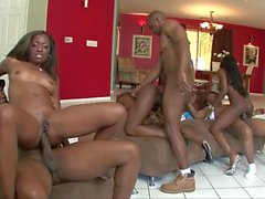 Sexy Girls Monique, Jada Fire, Diamond Jackson