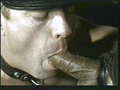 Lust ile deri