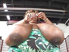 massive huge tits black bbw