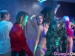 Party glam babes creamed