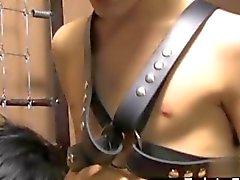 Face à lien du cuir de la jeune minet baise son l'esclave