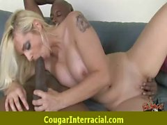 Cougar Pounce On Black Dick 9