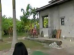Horny women sucking dick in car