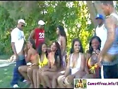 Ebony Orgy With Hot Black Girls