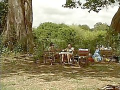 DBM - Safari Park