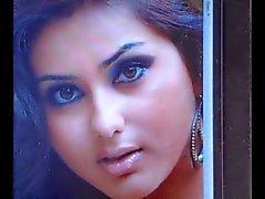 Tributo cum a atriz indiana tamil Namitha