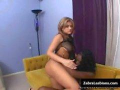 Zebra Girls - Ebony lesbian babes fuck deep strapon toys 12