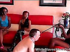 completamente umiliato schiavo bianchi