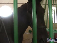 Lusty slut gets fucked in the stables
