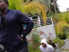 Leya Falcon Interracial Gang Bang
