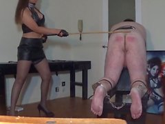 50-ish strokes of the cane from Miss Sultrybelle