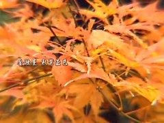 rbd0008 Yuki Toma (Mami Sakurail) PART 2