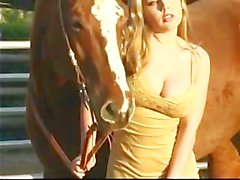 My Little Pony - Erica Campbell