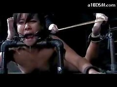 Tattooed Girl Mouthgagged Tied On The Floor Hook In Her Ass Whipped Pussy Fucked With Dildo In The Dungeon