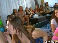 Exciting bachelorette party and a dick suck