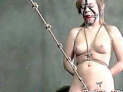 Box tied submissive being humiliated