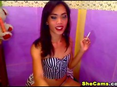 Slutty Shemale Grinds and Stripteases on Cam