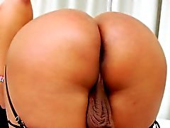 Love and fuck between tranny and her lover