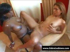 Zebra Lesbians - Sexy ebony lesbians fuck with strap-on toy 06