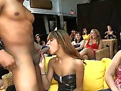 Girls love the taste of whipped spunk overspread cock