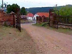 Bi boerderij