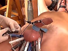 dometria electrotortures erect cock and zippers balls