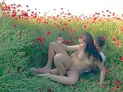 Raunchy sex at poppy field