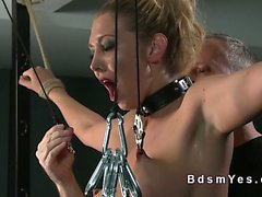 Tied up busty blonde pussy toyed