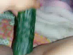 Beurette chienne ep 3 concombre