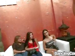 Dancing Bear Party