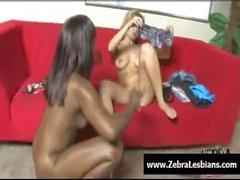 Zebra Lesbians - Sexy ebony lesbians fuck with strap-on toy 16