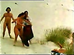vintage 70s german - Die Pinsel von der Liebesinsel - cc79