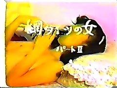japan vintage 7645
