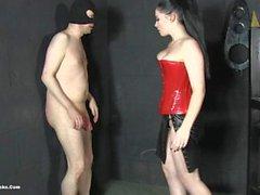 sophia ballbusting annoying slave
