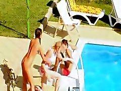 Três filhotes coito secretos à beira da piscina