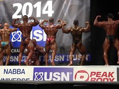 ROIDGUTTED MUSCLEBULL #94 NABBA Universe 2014, Professionals - Comparison 2