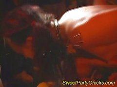 Sweet party chicks get fucked and cumshot wet load
