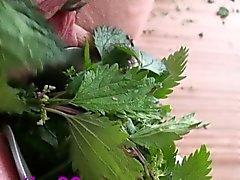 Nesseln in Pissloch urethrale Einfügung Nesseln