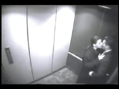 Im Aufzug durchgefickt