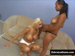 Zebra Girls - Ebony lesbian babes fuck deep strapon toys 23